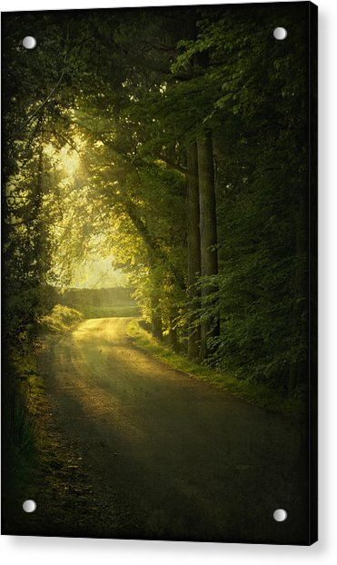 A Path To The Light Acrylic Print