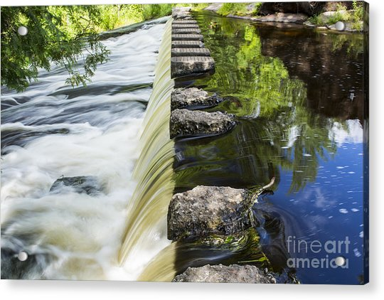 A Walk Of Life... Acrylic Print
