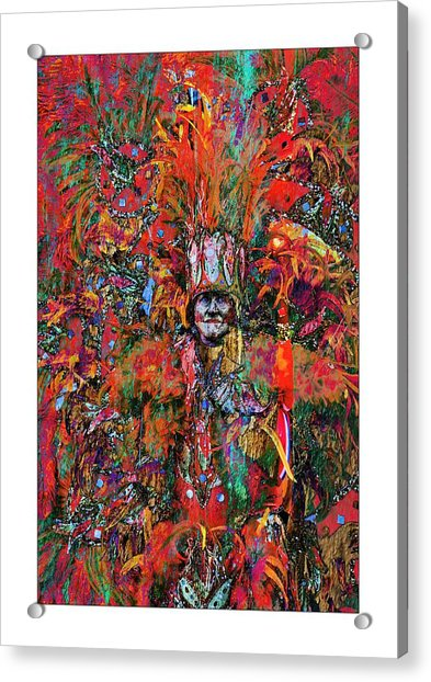 Acrylic Print featuring the photograph Abstracted Mummer by Alice Gipson