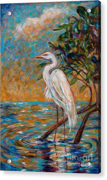Afternoon Egret Acrylic Print