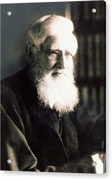 Alfred Russel Wallace Acrylic Print by American Philosophical Society