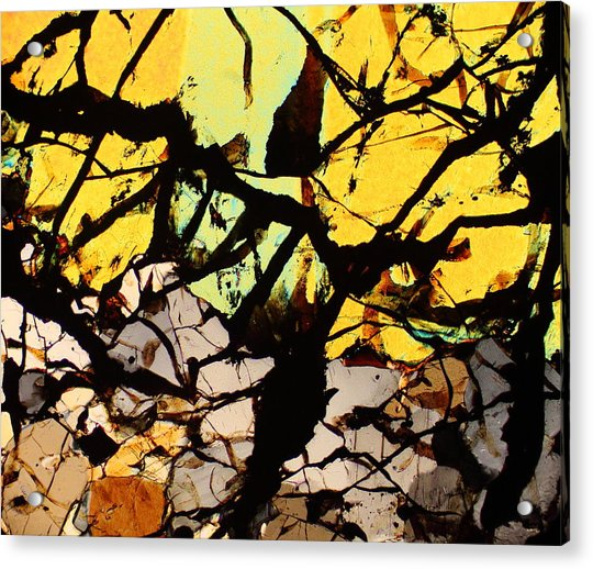 All Hallows Eve Acrylic Print