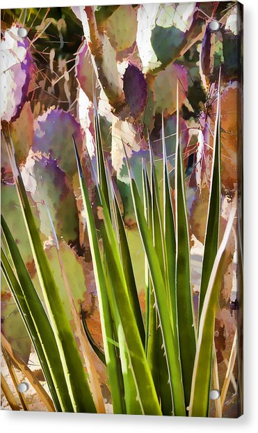 All Pointy And Sharp Acrylic Print