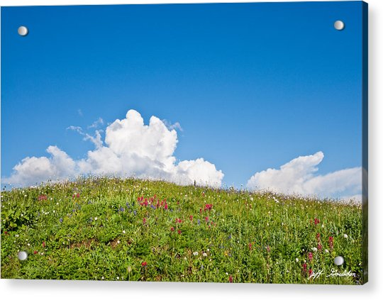 Alpine Meadow And Cloud Formation Acrylic Print