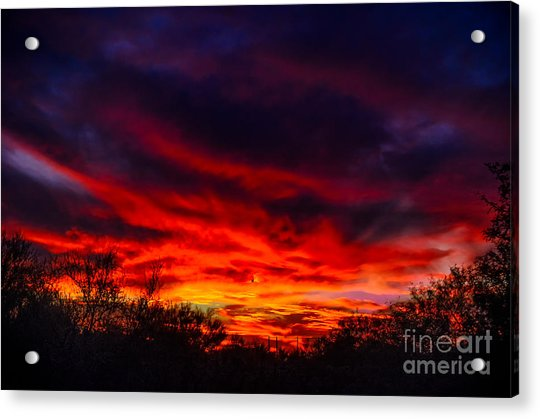 Another Tucson Sunset Acrylic Print
