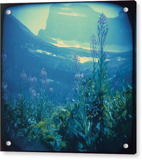 Aquarium Mountain Acrylic Print