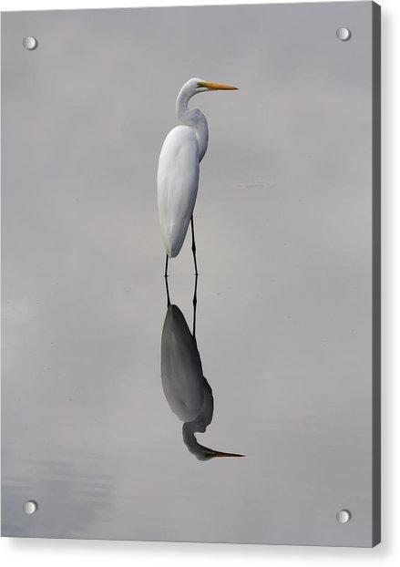 Argent Mirror Acrylic Print