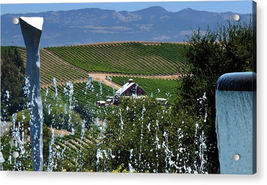 Artesa Vineyards And Winery Acrylic Print