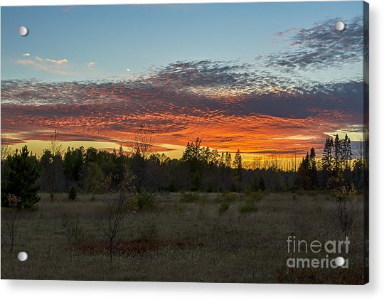 Autumn Evening Acrylic Print