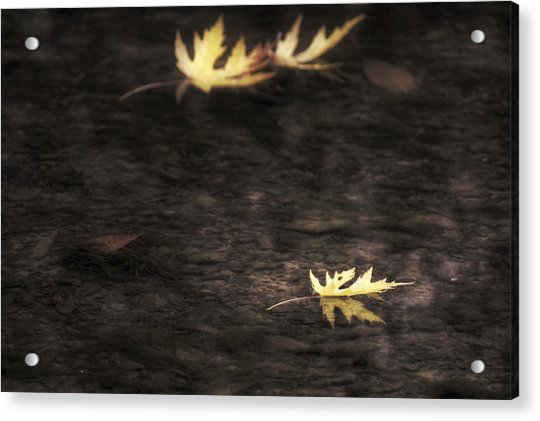Acrylic Print featuring the photograph Autumn Mood - Fall - Leaves by Jason Politte