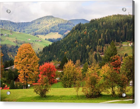 Autumnal Colours In Austria Acrylic Print