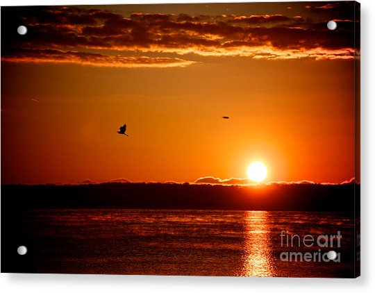 Awakening Sun Acrylic Print