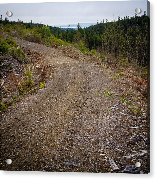 4x4 Logging Road To Adventure Acrylic Print