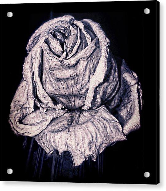 Beauty Wrinkle Acrylic Print