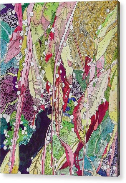 Berries And Cactus Acrylic Print