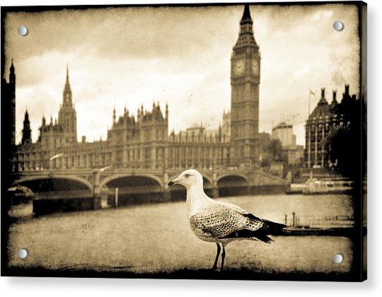 Big Ben And The Seagull Acrylic Print