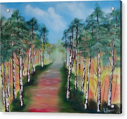 Birch Trees Along Winding Path Acrylic Print