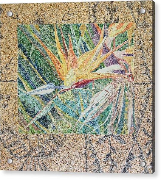 Bird Of Paradise With Tapa Cloth Acrylic Print