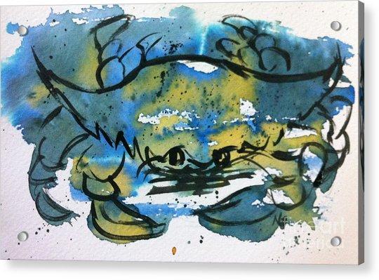Blue Crab Acrylic Print by Norma Gafford
