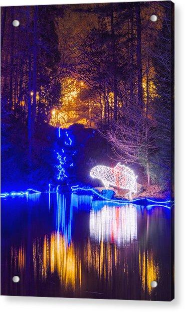 Blue River - Full Height Acrylic Print