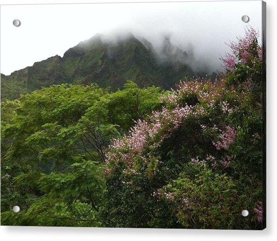 Botanical Garden View Acrylic Print