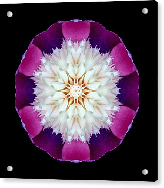 Bowl Of Beauty Peony II Flower Mandala Acrylic Print