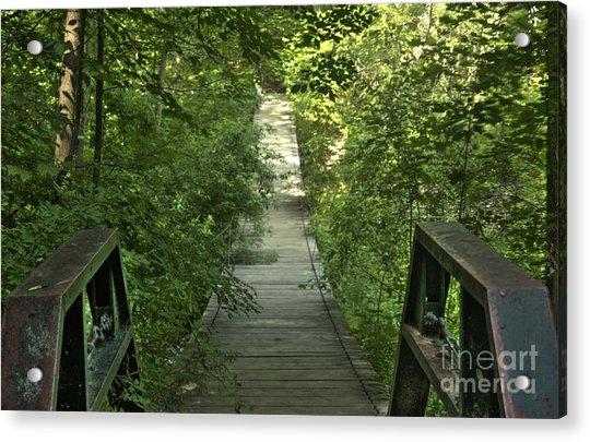 Bridge Into The Woods Acrylic Print