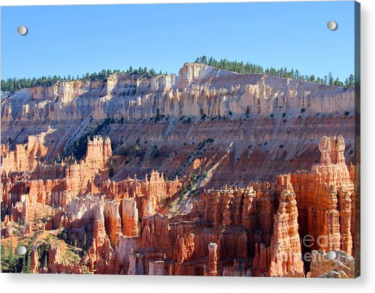 Acrylic Print featuring the photograph Bryce Amphitheater by Jemmy Archer