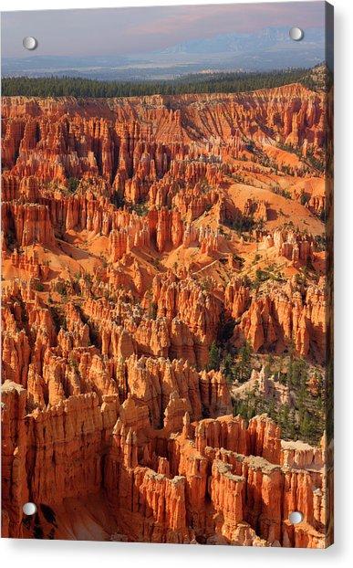 Bryce Canyon National Park - Acrylic Print by Ed Freeman
