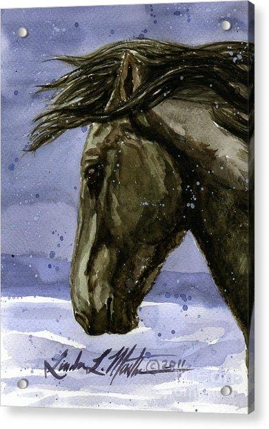 Buddy Bachelor Stallion Of Sand Wash Basin Acrylic Print