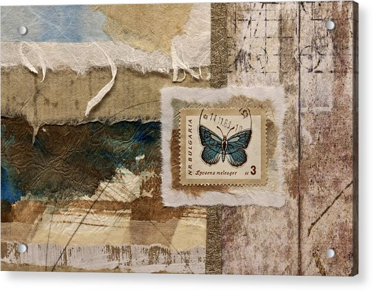 Butterfly And Blue Collage Acrylic Print