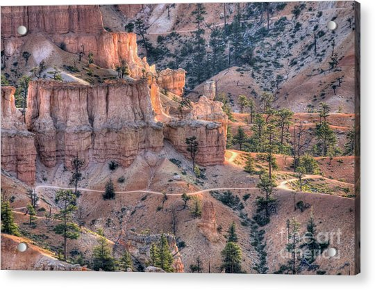 Canyon Trails Acrylic Print