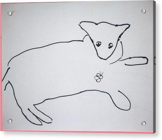 Cat Drawing Acrylic Print