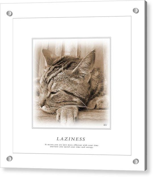 Cat Reflections 2 Acrylic Print