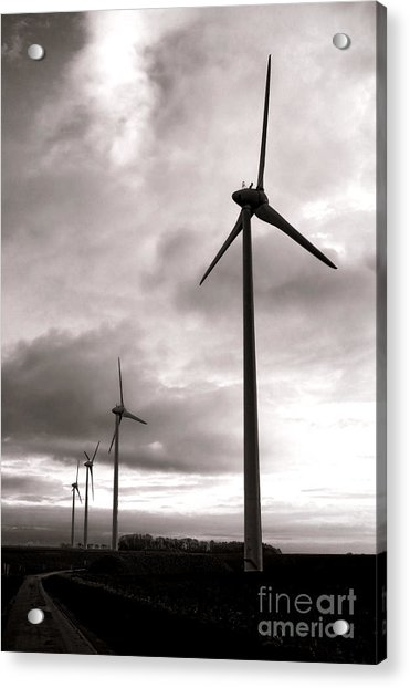 Catch The Wind Acrylic Print