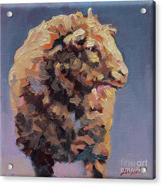 Cedric Acrylic Print