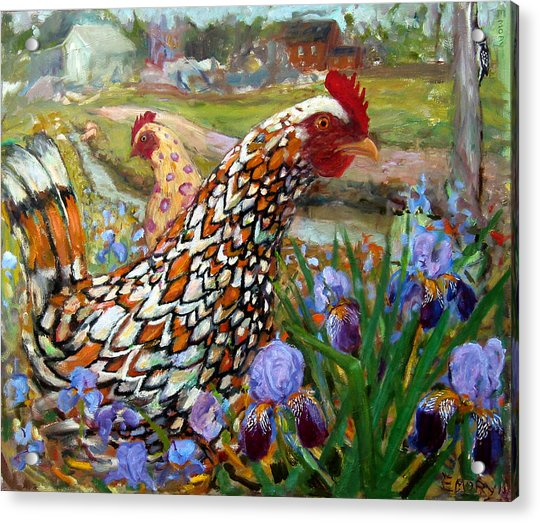 Chick And Iris Acrylic Print