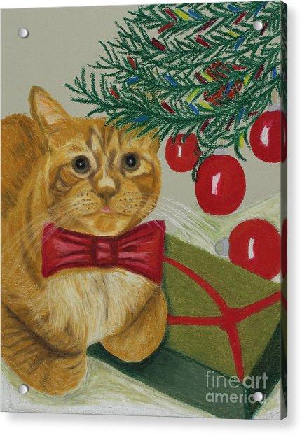 Christmas With Rufus Acrylic Print