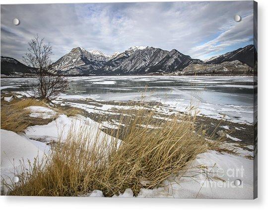 Cold Landscapes Acrylic Print