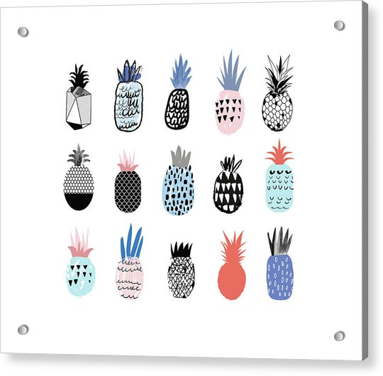 Collection Of Cute Pineapples With Acrylic Print