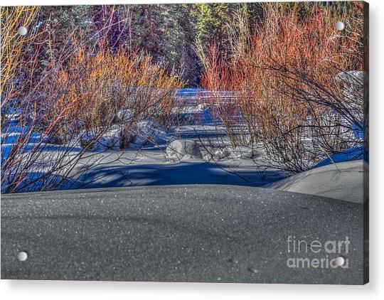 Colorful Despite Snow Acrylic Print