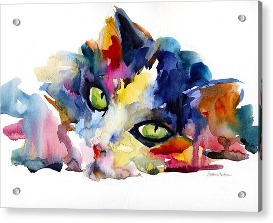 Colorful Tubby Cat Painting Acrylic Print