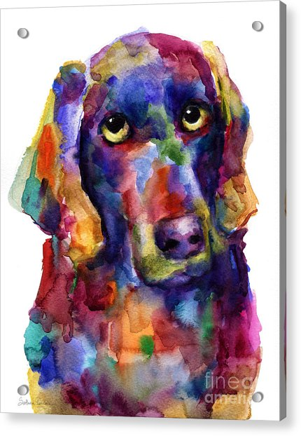 Colorful Weimaraner Dog Art Painted Portrait Painting Acrylic Print