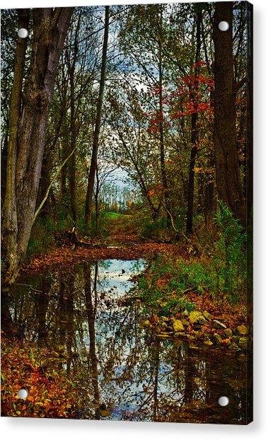 Colors Of Fall Acrylic Print