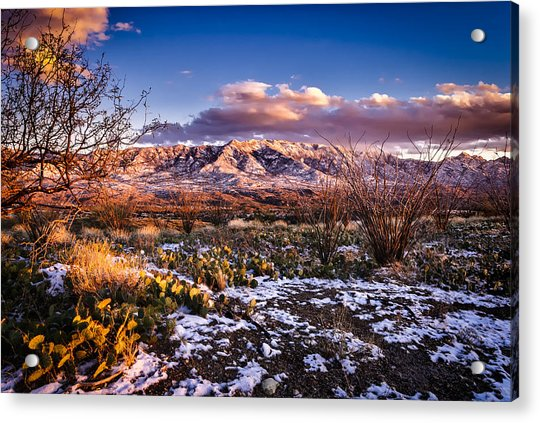 Colors Of Winter Acrylic Print