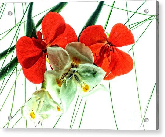 Combo Bouquet Acrylic Print