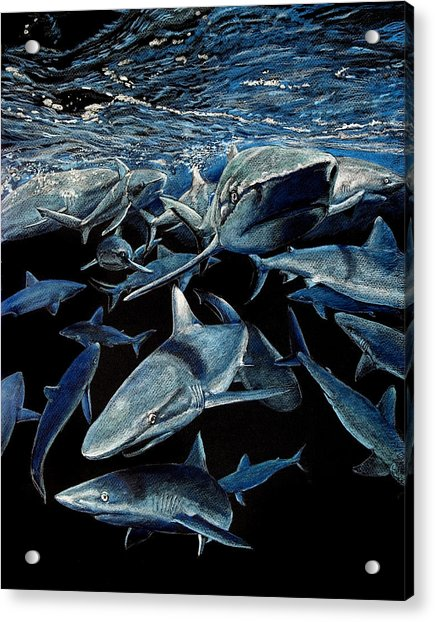 Come On In The Water's Fine Acrylic Print
