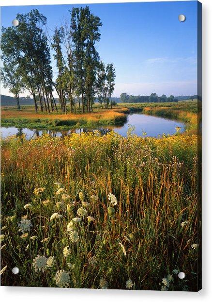 Creek Bend Acrylic Print