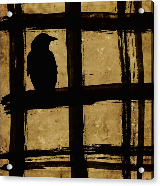 Crow And Golden Light Number 1 Acrylic Print