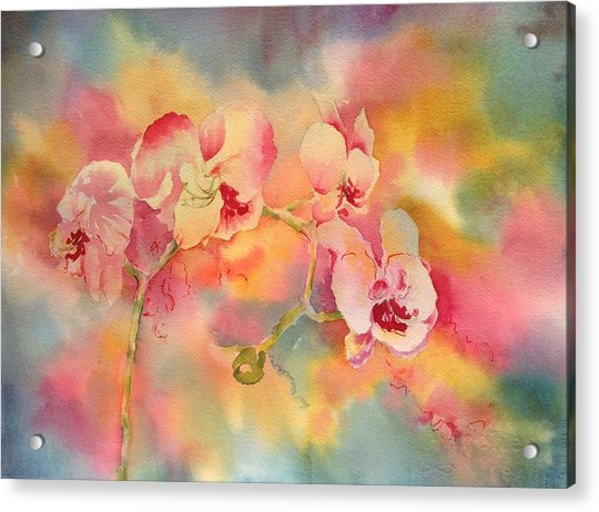 Dance Of The Orchids Acrylic Print